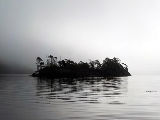 sea-black